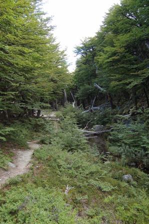 Trail to Lago Sucia